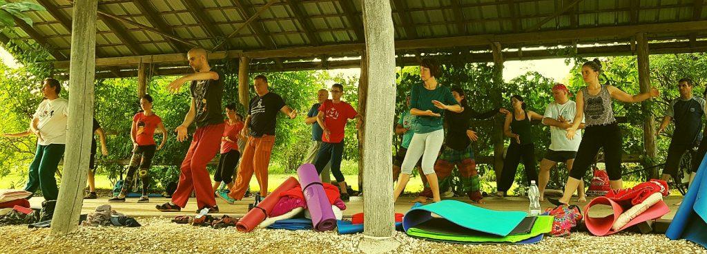 tai chi oktatás, tábor, csoport
