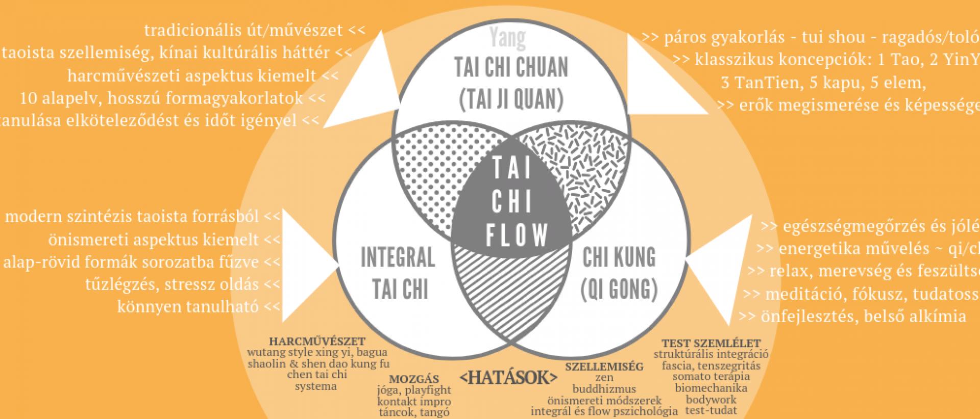 Tai Chi flow - módszer, iskola, közösség